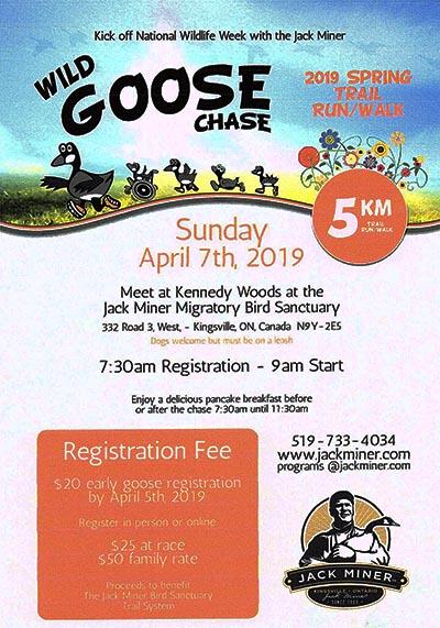Wild Goose Chase Poster Jack Miner