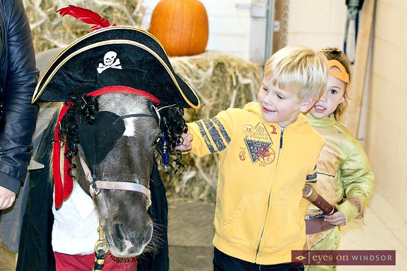 Young boy pets a pony dressed as a pirate during WETRA's Halloween Spooktakular on the Farm