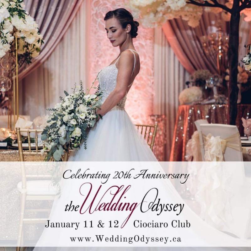 The Wedding Odyssey