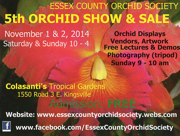 Essex County Orchid Society 5th Annual Orchid Show at Colasanti's