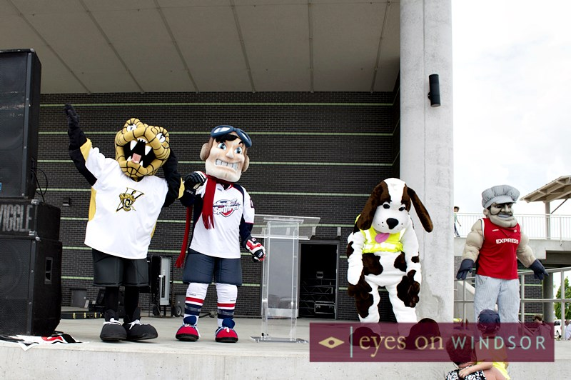 Mascots: Lasalle Vipers, Windsor Spitfires, Windsor Express, and Sparky.