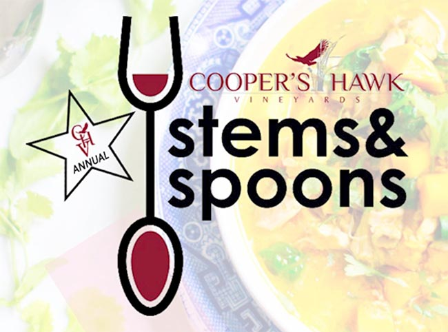 Stems and Spoons Wine and Soup Pairing Event