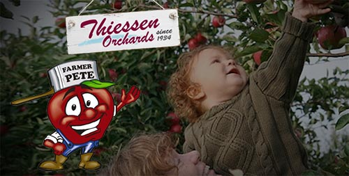 Thiessen Orchards