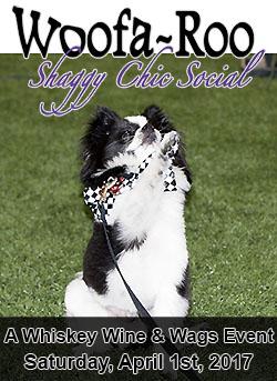 Woofaroo Shaggy Chic Social Banner