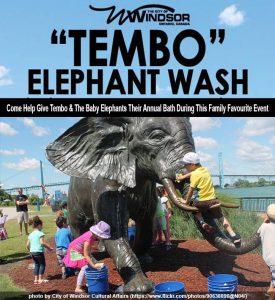 Tembo Elephant Wash