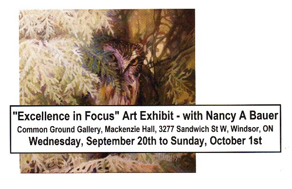 Excellence In Focus Exhibit With Nancy Bauer