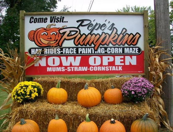 Pepe's Pumpkin Patch in Lasalle, Ontario.