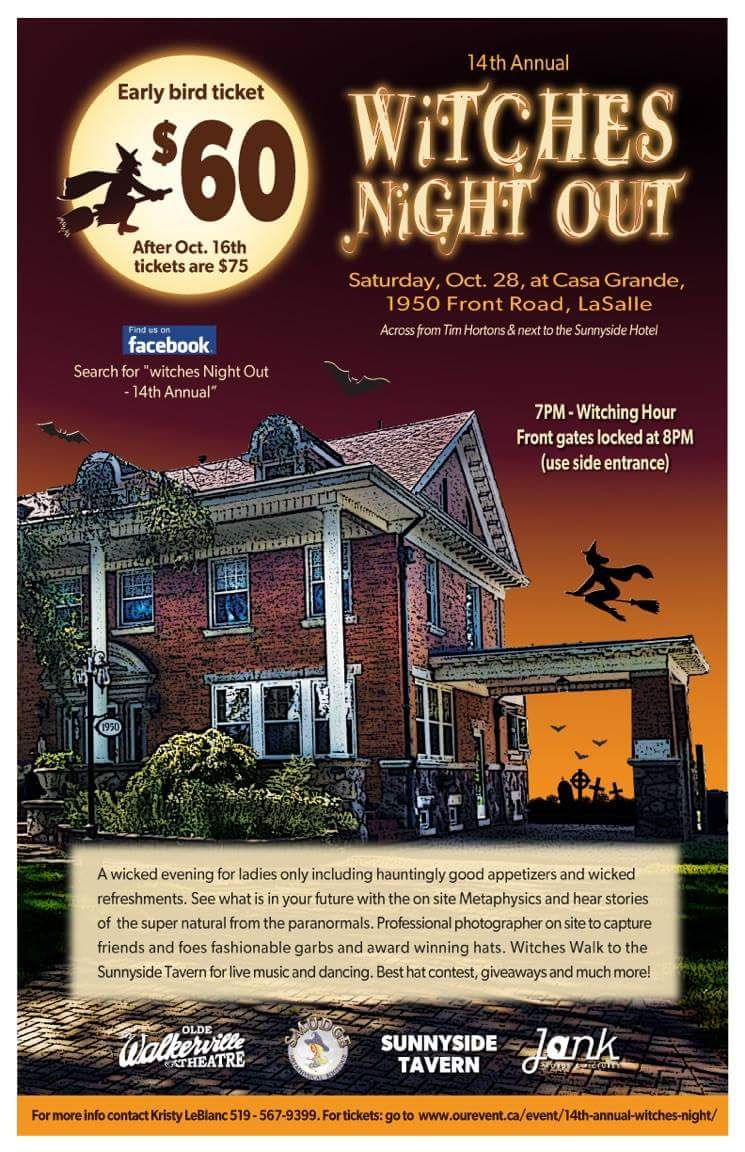 Witches Night Out Poster