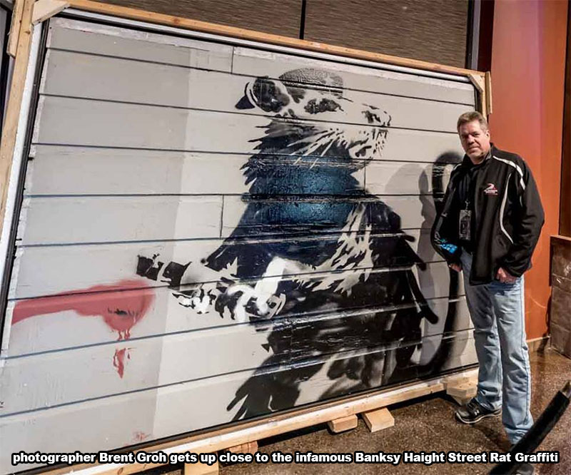 Brent Groh with Haight Street Rat by Banksy at exhibit being held at Wolfhead Distillery in Amherstburg.