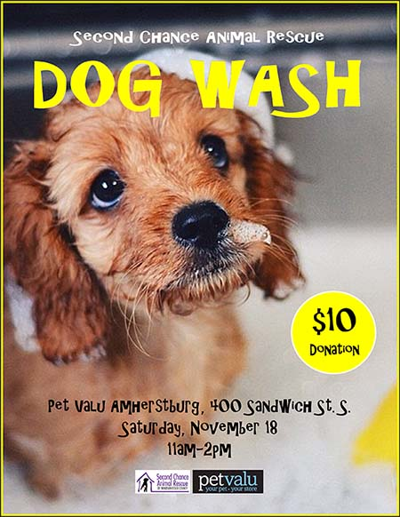 Second Chance Animal Rescue Dog Wash Fundraiser at Pet Valu in Amherstburg Poster