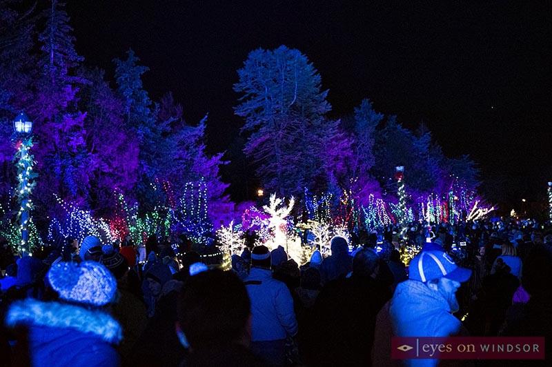 Beautiful light display at Jackson Park during Bright Lights Windsor Festival at Jackson Park.