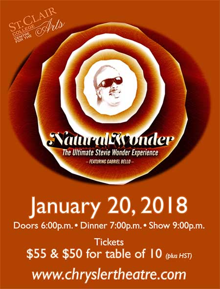 Natural Wonder: Stevie Wonder Show & Dinner Poster