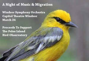 A Night of Music And Migration by the Windsor Symphony Orchestra in support of the Pelee Island Bird Observatory