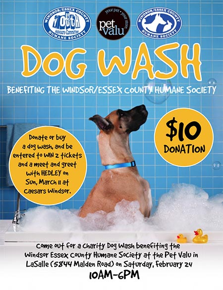 Windsor Essex County Humane Society Dog Wash at Pet Valu in Lasalle Poster