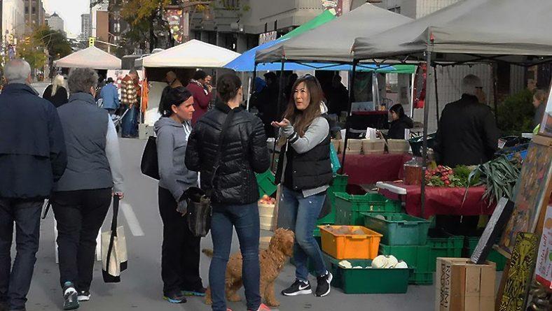 Downtown Windsor Farmers Market Preps For Halloween & Season Finale