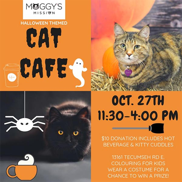Moggy's Mission Halloween Themed Cat Cafe Poster
