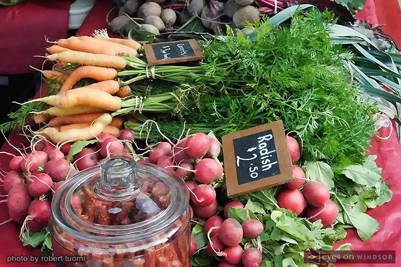 A selection of organic vegetables from Kingsville's Our Farm Organics