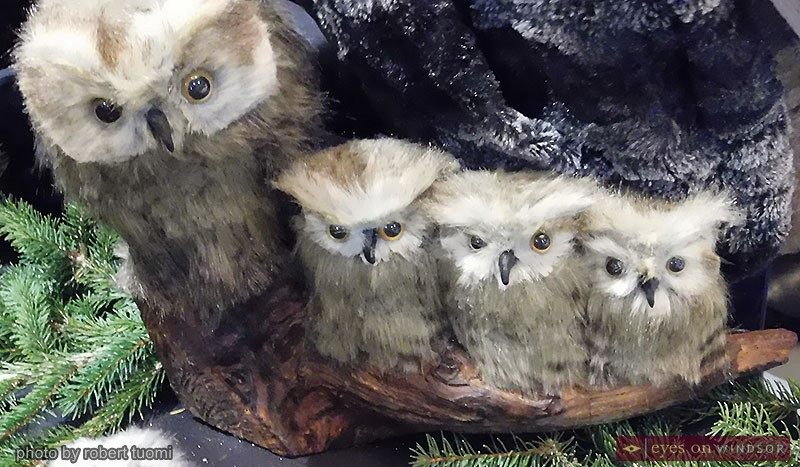 A collection of furry handmade owls by Nature's Touch at the Olde Walkerville Theatre's Annual Holiday Craft Show