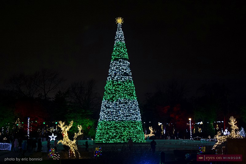 Giant Christmas Tree at Bright Lights Windsor