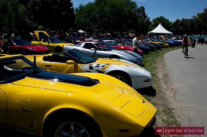 Waterfront Corvette Show