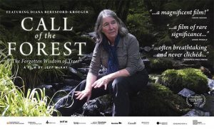 Call Of The Forest Movie Night at Point Pelee National Park