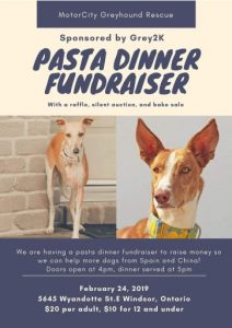 Motorcity Greyhound Rescue Pasta Dinner Fundraiser Poster