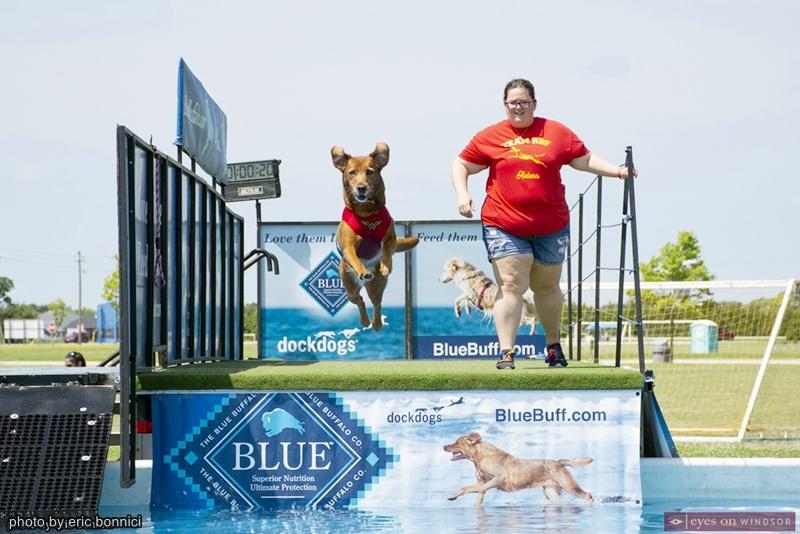 Dock Dogs Diving at Woofaroo Pet Fest