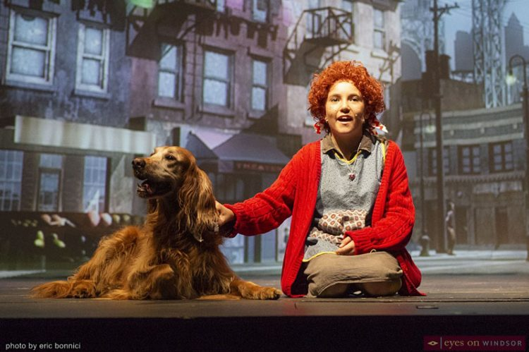 Review: Annie by Cardnianl Music is A Full-Scale Heart Melting Delight