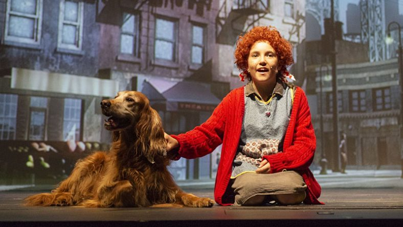 Review: Annie by Cardinal Music is A Full-Scale Heart Melting Delight