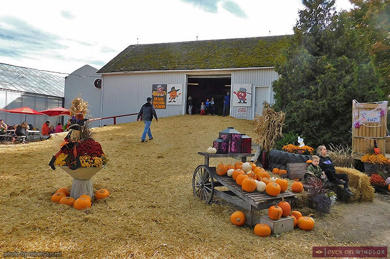 Haw Mow Barn at Thiessen Orchards
