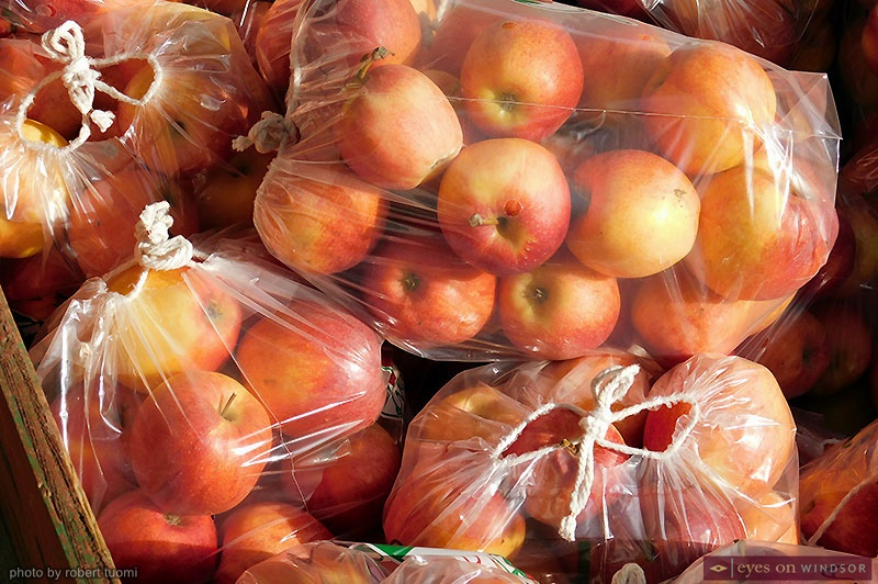 Bagged apples at Thiessen Orchards