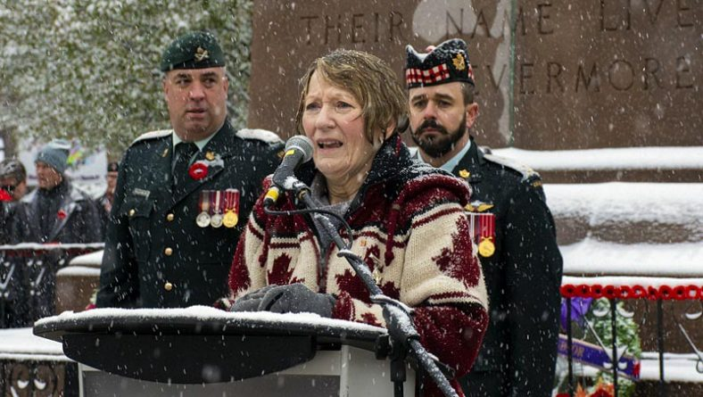 Windsor Remembrance Day Honours Sacrifices Despite Heavy Snowfall