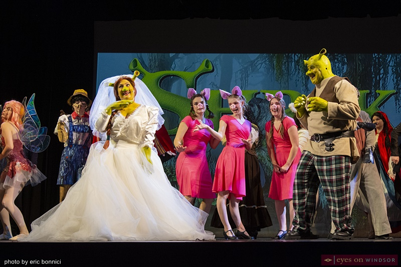 Cast members of Cardinal Music Productions Shrek The Musical