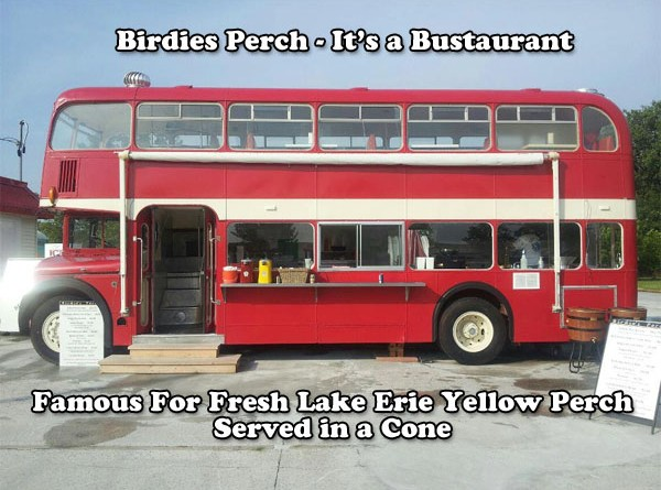Birdies Perch | It's a Bustaurant