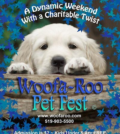 5 Crazy Fun Things to Do at The First Annual Woofa-Roo Pet Festival