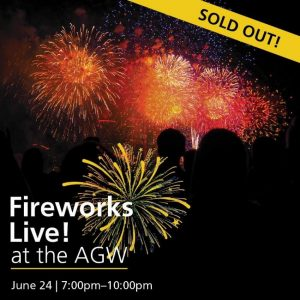 Fireworks Live! Art Gallery of Windsor