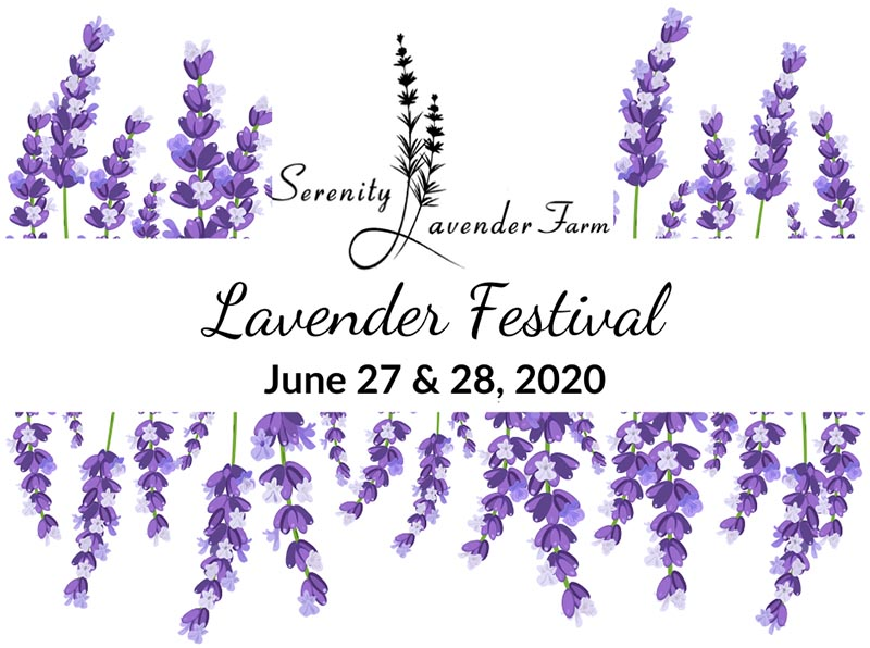 Lavender Festival Poster | Serenity Lavender Farm