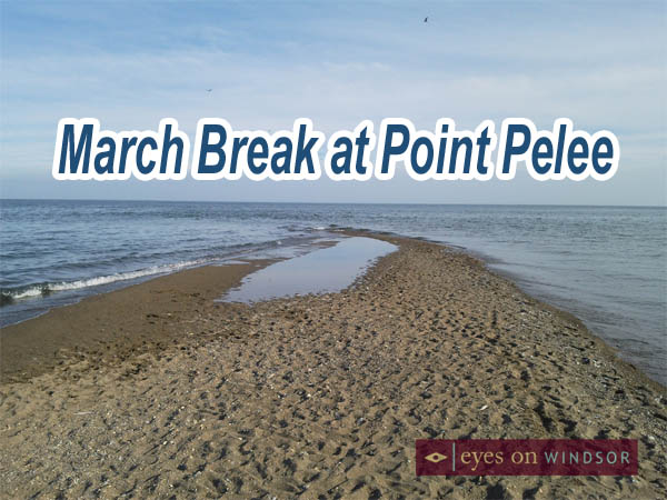 March Break at Point Pelee National Park