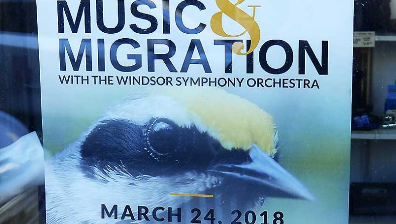 Saturday Is For Bird Music Listening: Music & Migration With Windsor Symphony Orchestra
