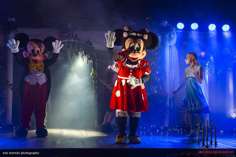 Mickey and Minnie from D&D Mascots