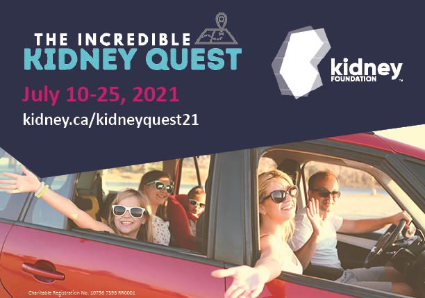 The Incredible Kidney Quest Windsor Poster