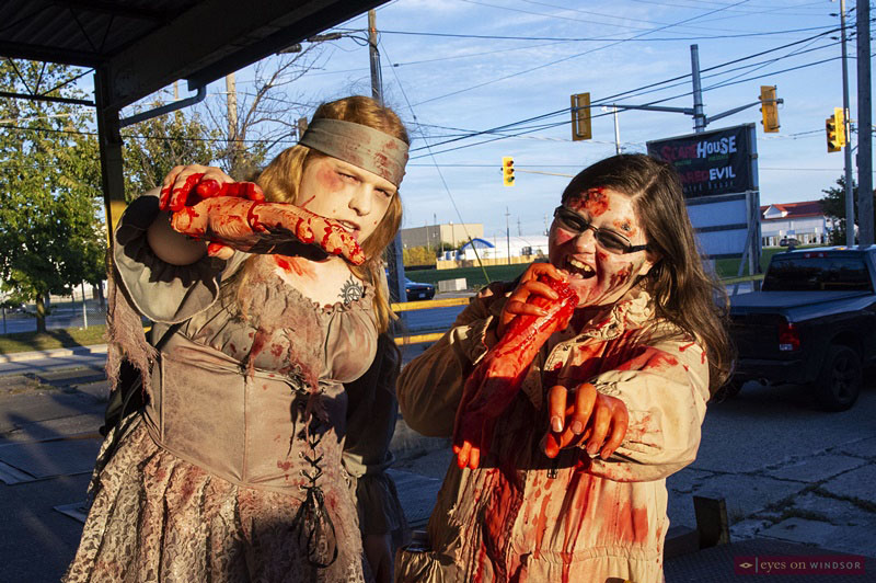 Windsor Zombie Walk participants chewing on body parts